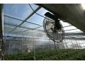 Klimafogtech - szklarnie - centra ogrodnicze